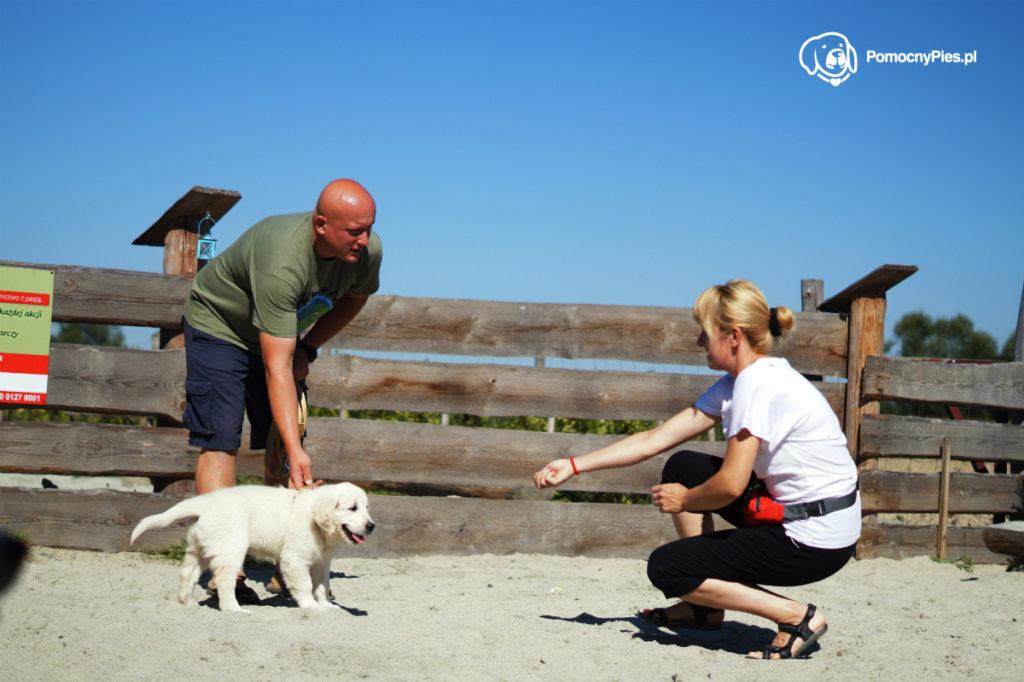Pierwszy dzień Rosy w psim przedszkolu