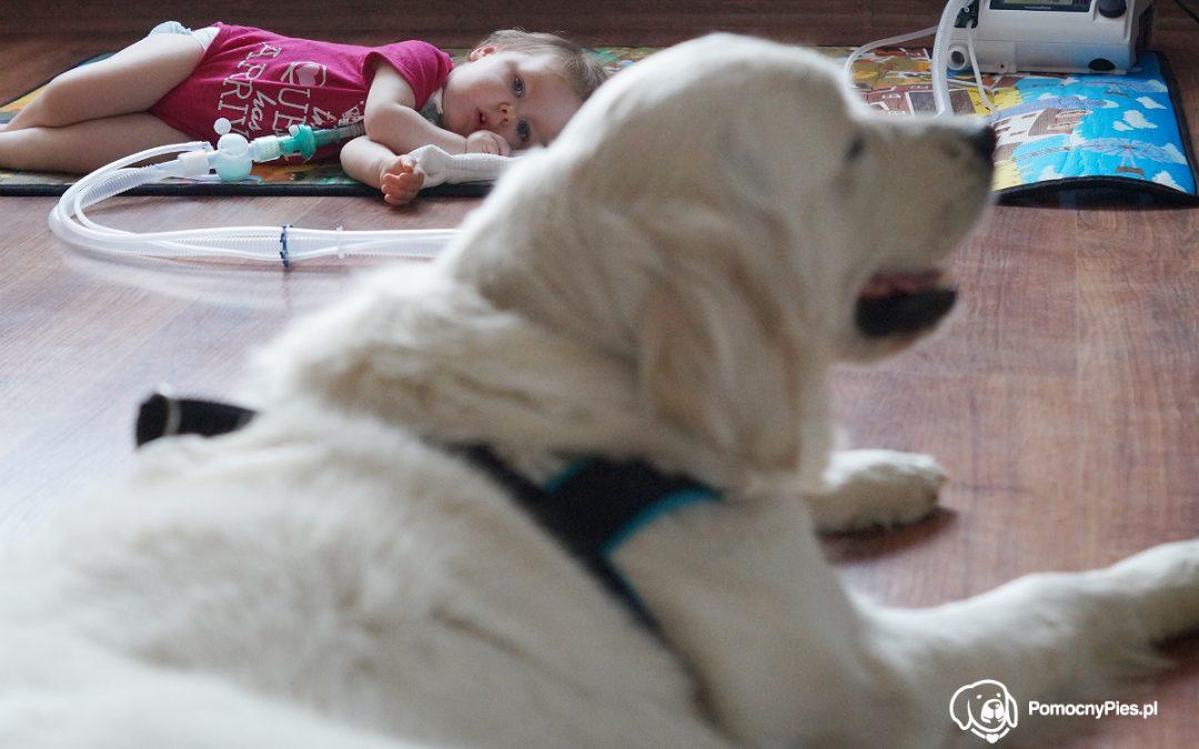 Zooterapia dla niepełnosprawnych dzieci